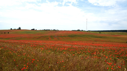 Landschaft bei Keula