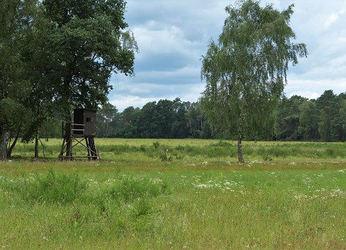 Nature area Hühnerkamp