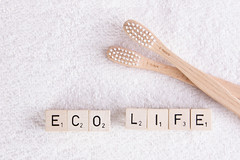 Wooden toothbrushes with eco life text