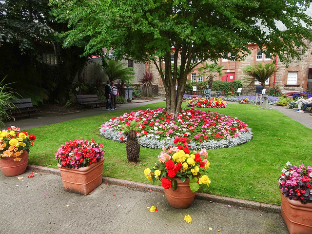 Flowerbeds in Campbeltown, 2018 Aug 07