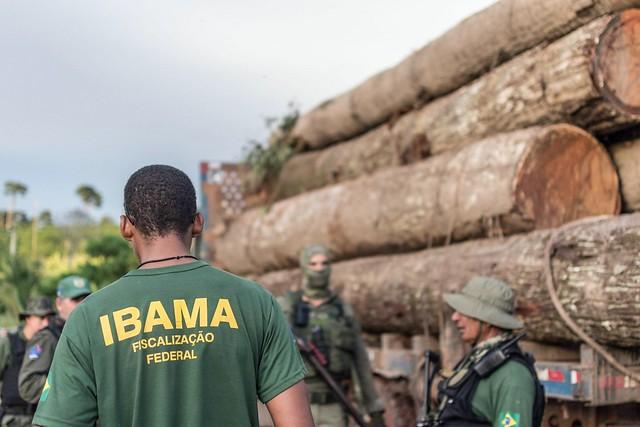 Falta de definição sobre o comando do Ibama prejudica fiscalização no Pará - Créditos: Vinícius Mendonça | Ibama