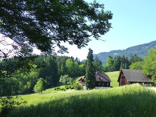 Millstatt - Waldweg