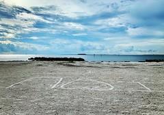 Apollo Beach Declaring Love For Tampa Bay Florida Or Beer Can Island? - IMRAN™