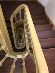 Escher 11