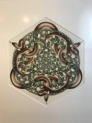Escher 8