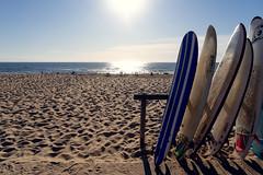 Beach 08994