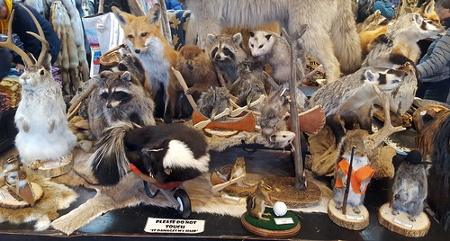 Store decor in Jackson, WY