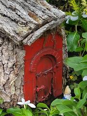 Gnome Home?