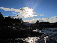 Grassy Point Silhouette
