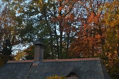 Huis en bomen in Arnhem (135FJAKA_2529)