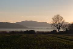 Image by Massimo_Discepoli (massimodiscepoli) and image name Golden hour photo