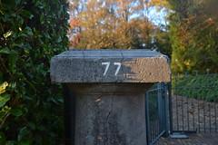 77 (135FJAKA_2525)