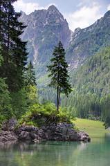 Monte Buconig Vrh Bukovnika (2075m)