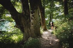 Biogradska Gora, Montenegro, 2019.