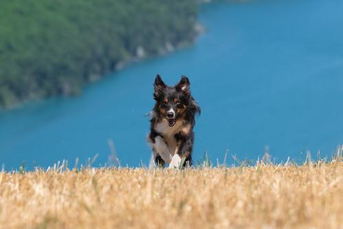 Running up hill