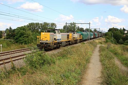 Lineas 7814 - 55 Gingelom 19-08-2019
