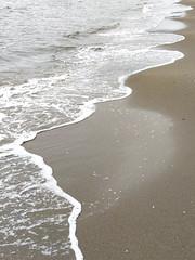 Shore shapes