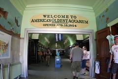 Welcome to America's Oldest Aquarium