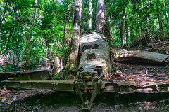 Image by NettyA (7272097@N08) and image name Piper Comanche wreck photo  about Last month I did a bushwalk with Tatters to the Piper Comanche plane wreck in D'Aguilar National Park in Brisbane, Queensland.  The plane crashed in bad weather in 1977 and unfortunately the pilot was killed. Along the way we saw an old logging winch as previously the park was a state forest.  Explo