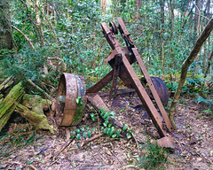 Image by NettyA (7272097@N08) and image name Old logging winch photo  about Last month I did a bushwalk to the Piper Comanche plane wreck in D'Aguilar National Park in Brisbane, Queensland.  The plane crashed in bad weather in 1977 and unfortunately the pilot was killed. Along the way we saw an old logging winch as previously the park was a state forest.