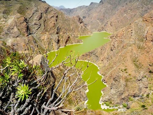 Espagne, l'île de la Grande Canarie,  ici une curiosité le Lac vert, barrage de Parralillo