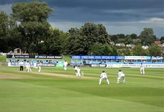 Cricket at Derby
