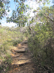 Trailhead - Mt Martin Botanical Walk, Albany, Western Australia