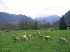 Bourisp  Vallée d'Aure (7)