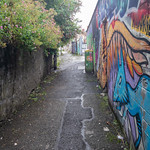 ST. PETER'S LANE [URBAN EXPRESSION AND DEPRESSION IN PHIBSBOROUGH]-155070