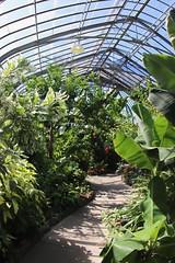 Tropical Exhibit room