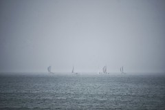 Sails in the Mist