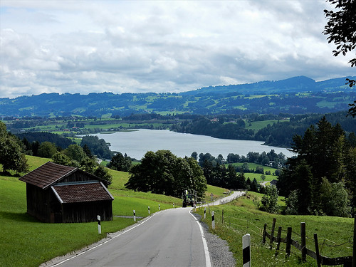 Niedersonthofer See, Allgäu - Germany (CN4169)