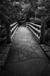It's A Bridge