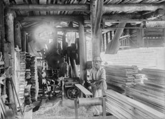 Donald Gray Brims in his sawmill in Ingham, Queensland