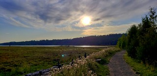 Theler Wetlands, Union River Trail