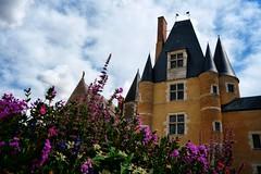 Le château des Stuarts à Aubigny sur Nere (Cher).