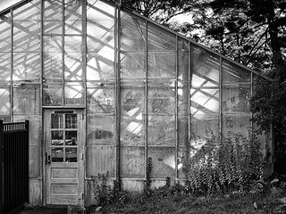 The Greenhouse that Grows Shadows