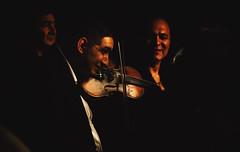 Violinist Momir Jovanovic