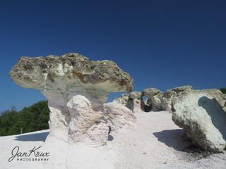 The Stone Mushrooms