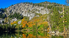 Coat of Many Colors, Autumn at Lake Geroge, CA 2016