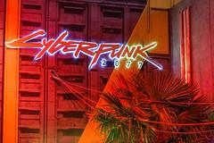 Cyberpunk 2077 Kulisse in rotem Licht und beleuchteter Schriftzug