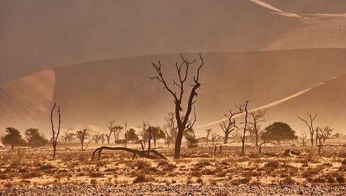 Sandstorm in Sossusvlei / Namibia