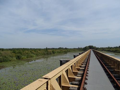 Old railroad bridge in the 'Halvezolenlijntje' in nature reserve 'de Moerputten'.