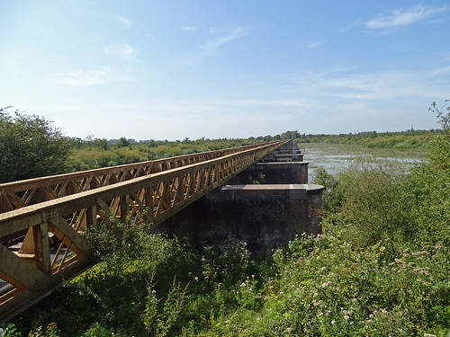 Old railroad bridge in nature reserve 'De Moerputten'