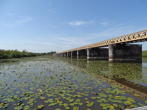 Bridge in the 'halvezolenlijntje' in nature reserve de Moerputten.
