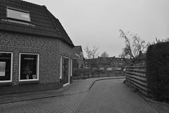 Huis in Ommen, zwart-wit (135FJAKA_2587)