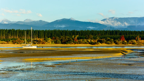 NZ Landscape (5)