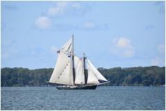 Tall Ship - Lettie G. Howard
