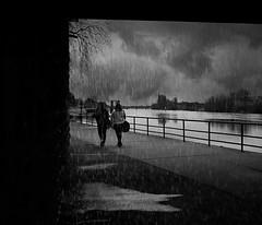 Un matin de pluie