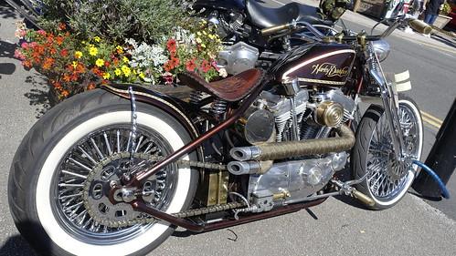 Baildon Harley-Davidson Rally (31)